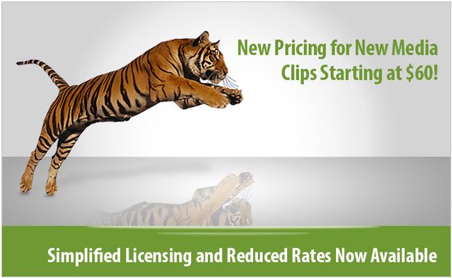 New Media Pricing