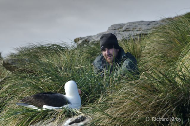 Our Assistant Producer, Anthony Pyper discusses the terms of contract with a Black Browed Albatross