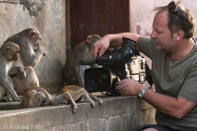 3Working with Macaques
